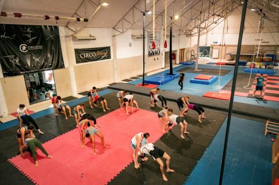 Circocan Floripa gym up